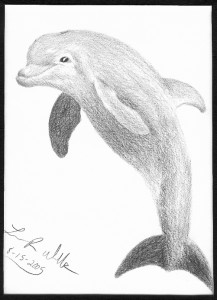 Dolphin-SCANNED_greyscale